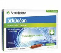 Arkocean Magnesium Marin Solution buvable caramel 20 Ampoules/10ml à MULHOUSE