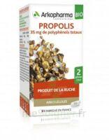Arkogélules Propolis Bio Gélules Fl/45 à MULHOUSE