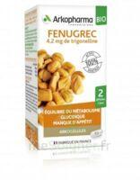Arkogélules Fenugrec Bio Gélules Fl/40 à MULHOUSE