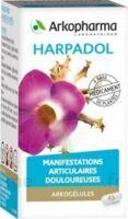 ARKOGELULES HARPAGOPHYTON, 150 gélules à MULHOUSE