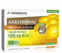 Arkoroyal Gelée royale bio 1500 mg Solution buvable 20 Ampoules/10ml à MULHOUSE